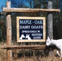 Maple-Oak Farm Saanens Street Sign and Logo
