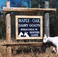 Maple-Oak Farm Saanens Street Sign and Logo